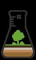 Лесные почвы и изменение климата